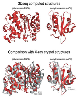 protein structure images from cBio paper small